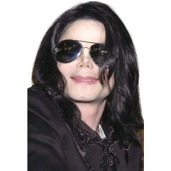 Michael Jackson Long Straight Wig *IN STOCK*
